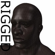 RIGGED Muscular Black Man Base Mesh 3d model