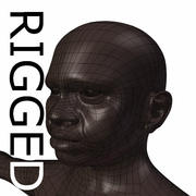 RIGGED Old Black Woman Base Mesh 3d model