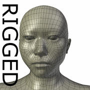 RIGGED Asian Mesh base Mesh 3d model