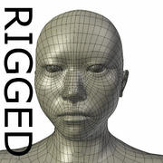 RIGGED Asian Mesh base Mesh 3d model