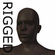 RIGGED young black man Base Mesh 3d model