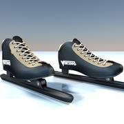 Patinar sobre hielo modelo 3d