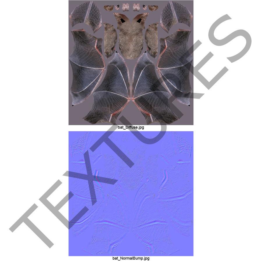 Bat royalty-free 3d model - Preview no. 11
