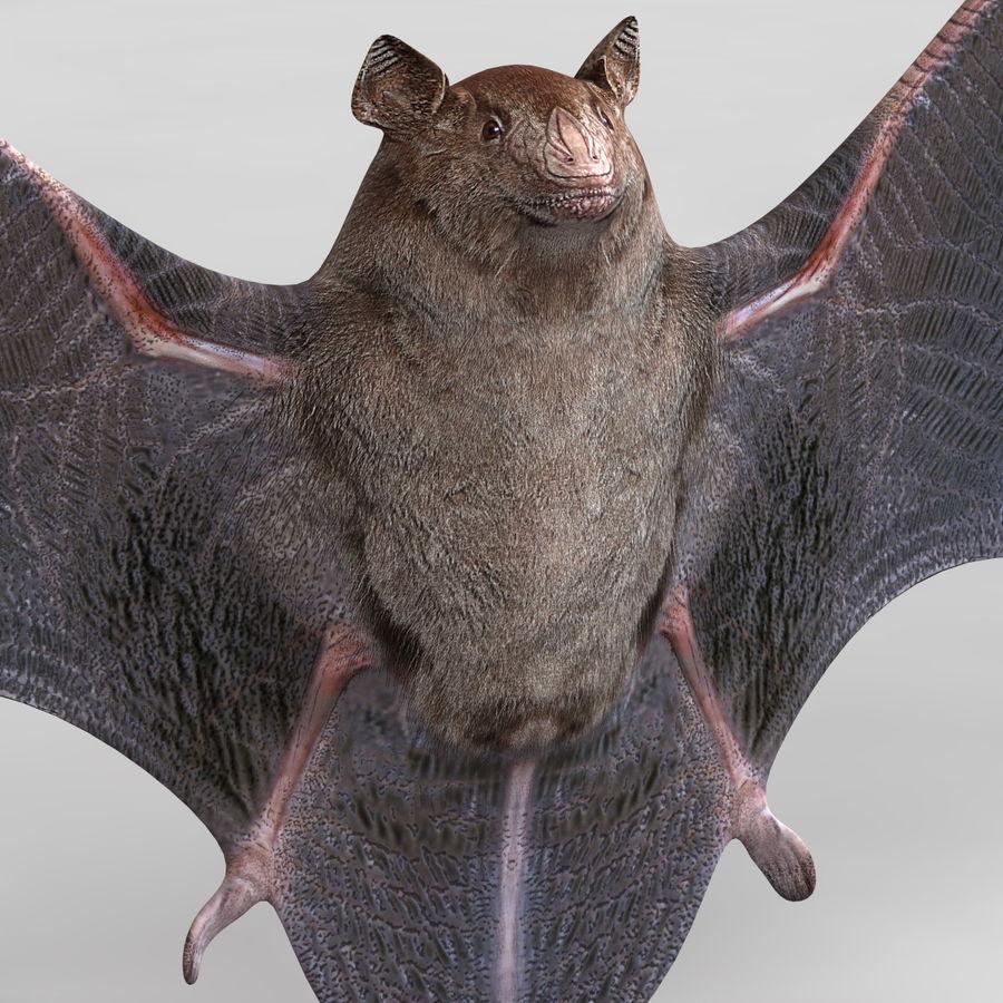 Bat royalty-free 3d model - Preview no. 8