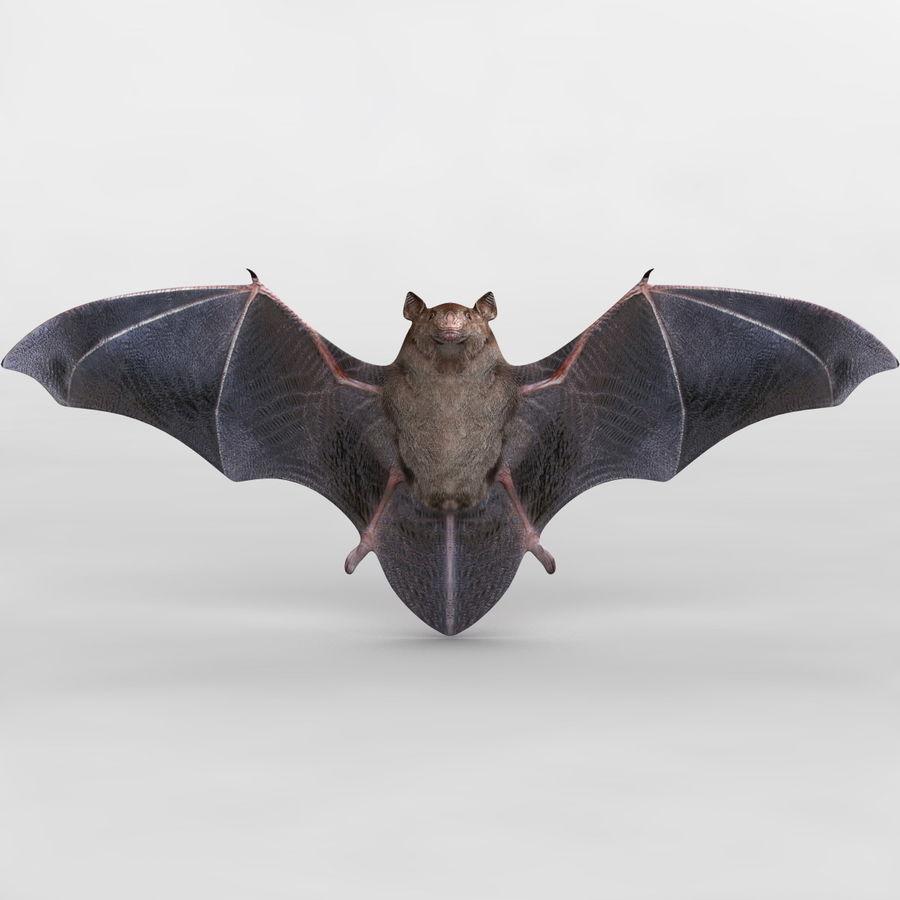 Bat royalty-free 3d model - Preview no. 2