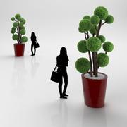 Bollträd 3d model