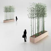Bambu i träkruka 3d model