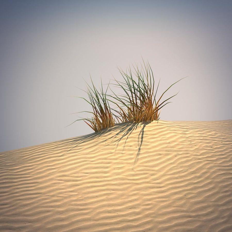 Desert Grass Set royalty-free 3d model - Preview no. 4