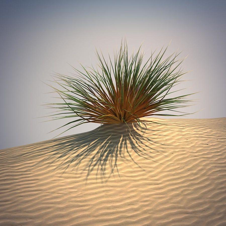 Desert Grass Set royalty-free 3d model - Preview no. 2