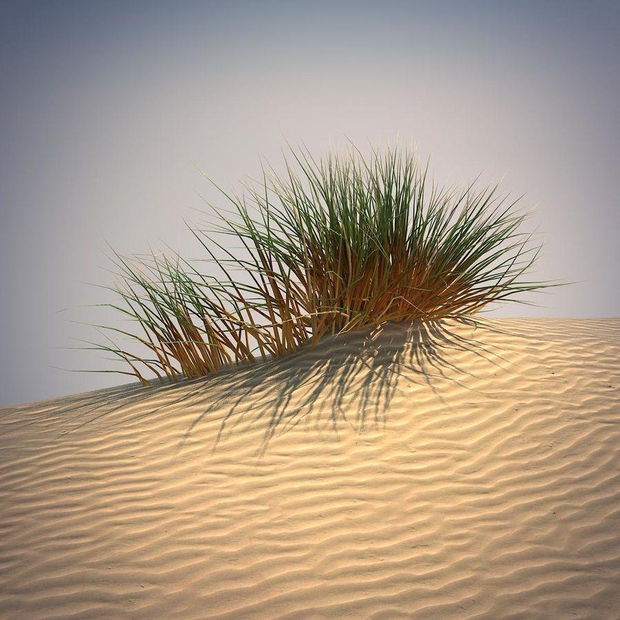Desert Grass Set royalty-free 3d model - Preview no. 1
