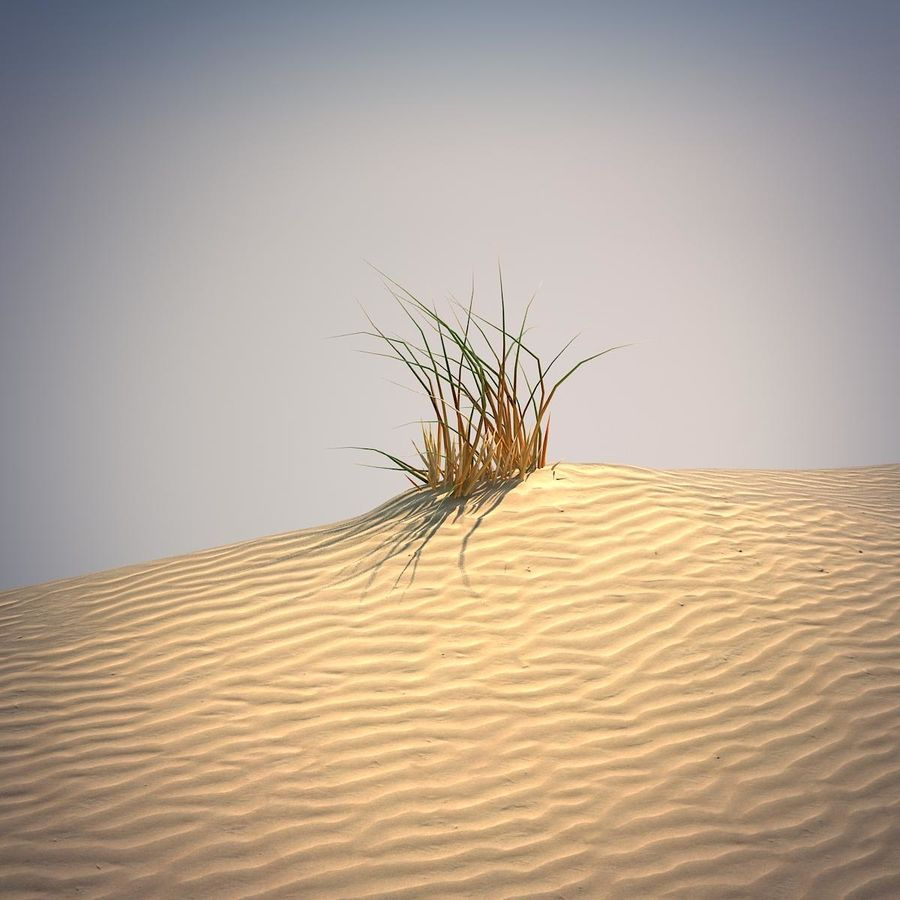 Desert Grass Set royalty-free 3d model - Preview no. 5
