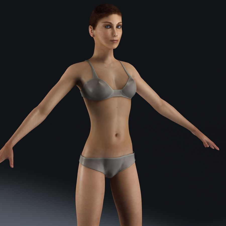 女性解剖学 royalty-free 3d model - Preview no. 8