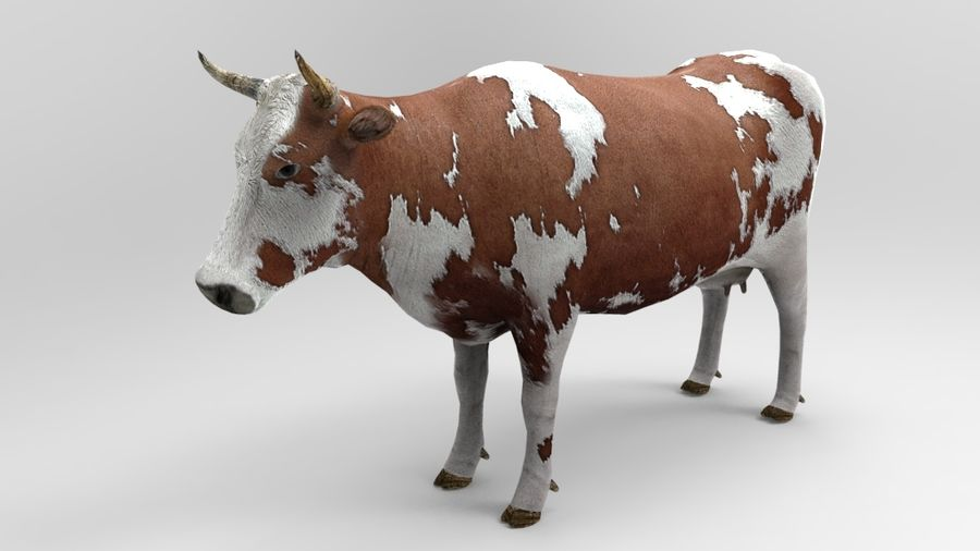 cow royalty-free 3d model - Preview no. 2
