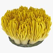 Hongo de coral modelo 3d
