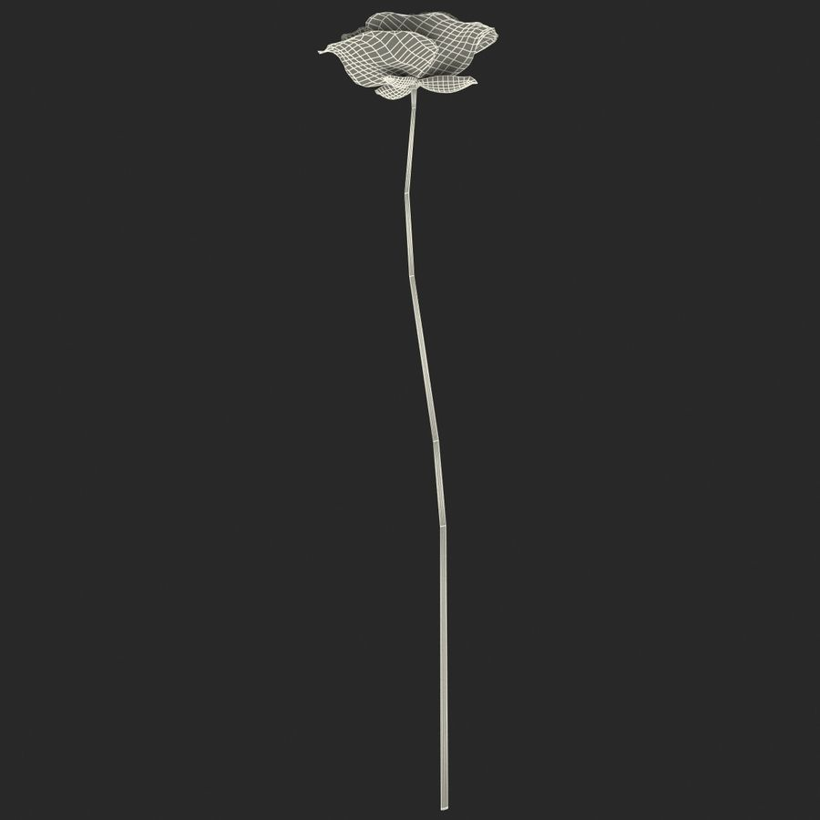 Red Poppy royalty-free 3d model - Preview no. 12