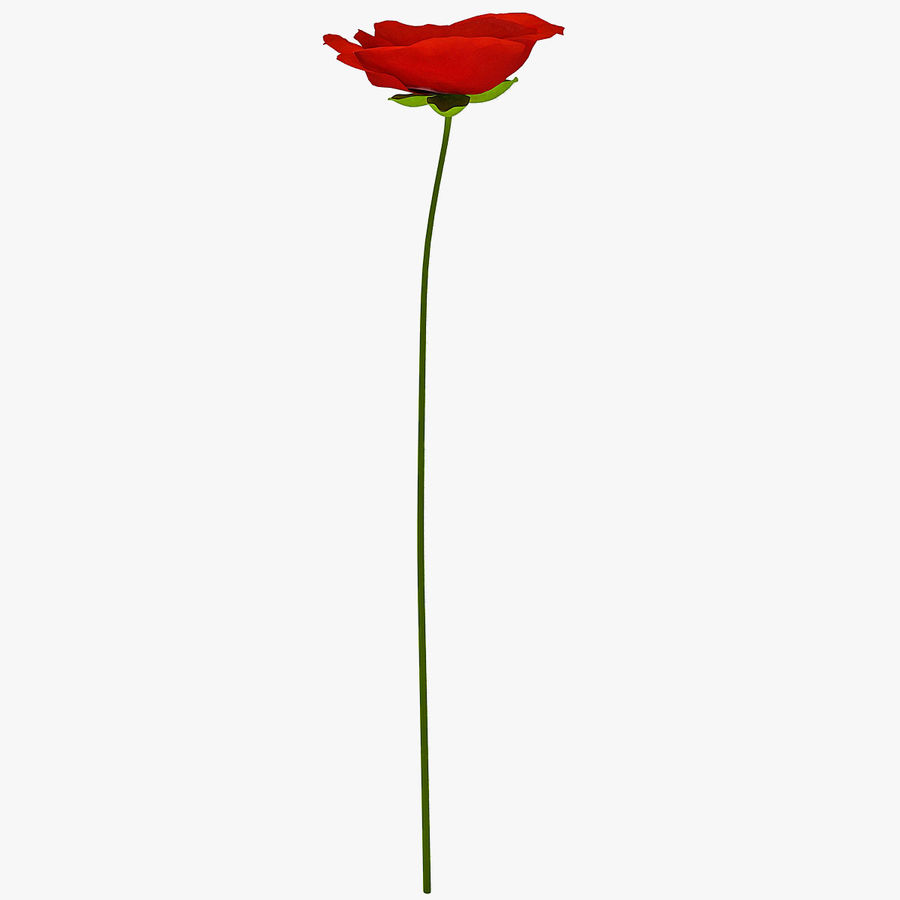 Red Poppy royalty-free 3d model - Preview no. 1