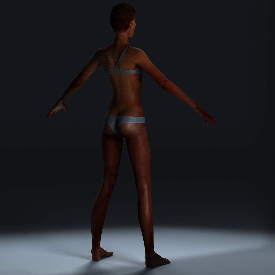 African Female Anatomy royalty-free 3d model - Preview no. 18