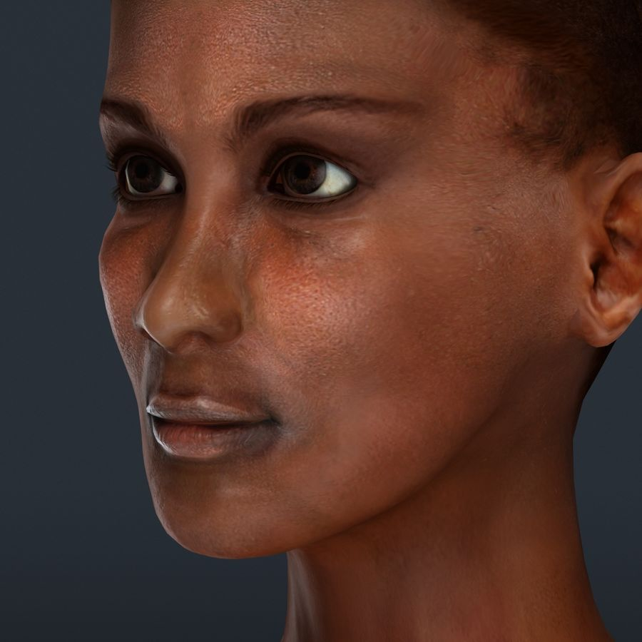 African Female Anatomy royalty-free 3d model - Preview no. 28