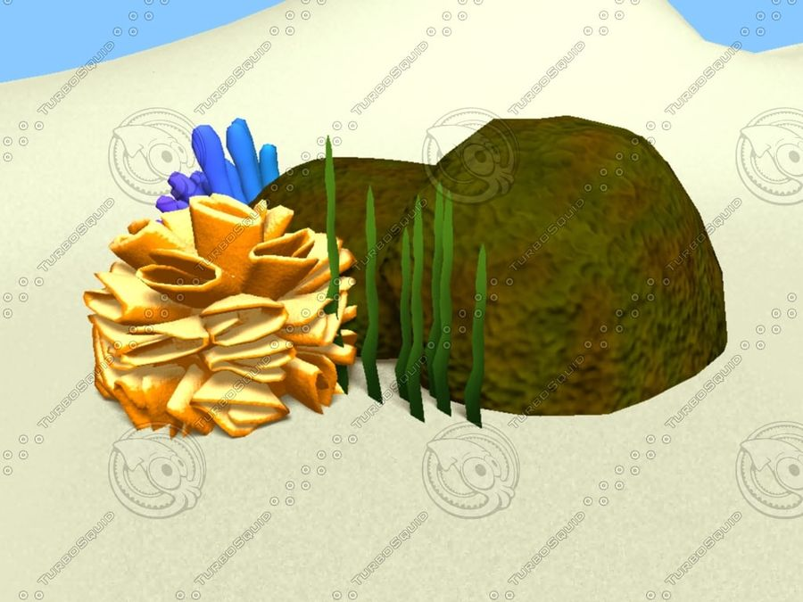 Coral royalty-free modelo 3d - Preview no. 4