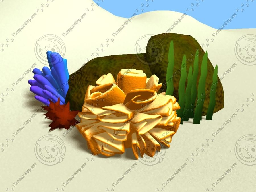 Coral royalty-free modelo 3d - Preview no. 5