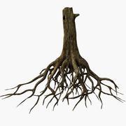 Ağaç kökleri 3d model