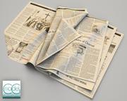华尔街日报6 3d model