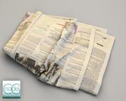 газета Wall Street Journal 8 3d model