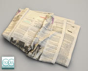 giornale wall street journal 8 3d model