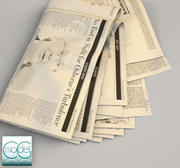 giornale wall street journal 10 3d model