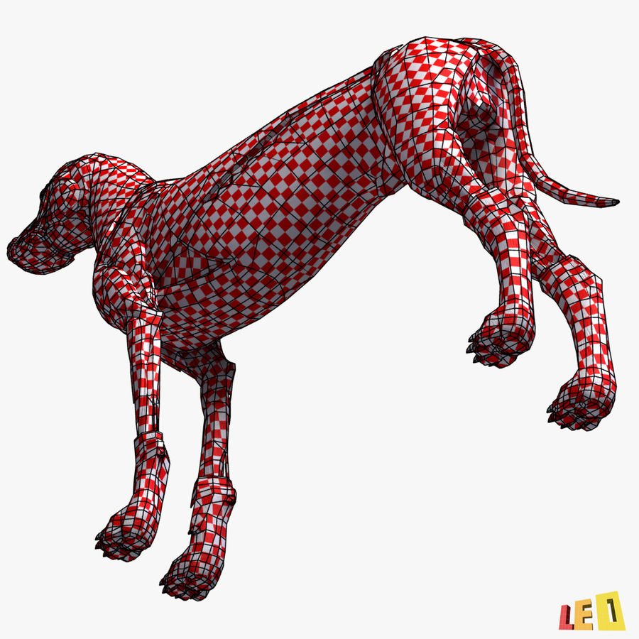 Musculature canine royalty-free 3d model - Preview no. 8