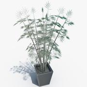 Bambus z doniczką 3d model