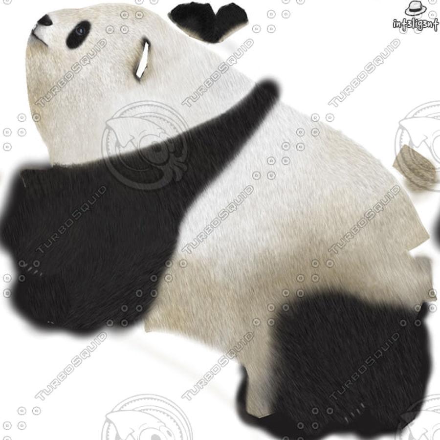 熊猫 royalty-free 3d model - Preview no. 10