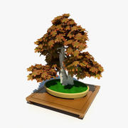 Bonsai - Twin Trunk Style Acer 3d model