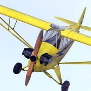 Piper L-4 Grasshopper 3d model