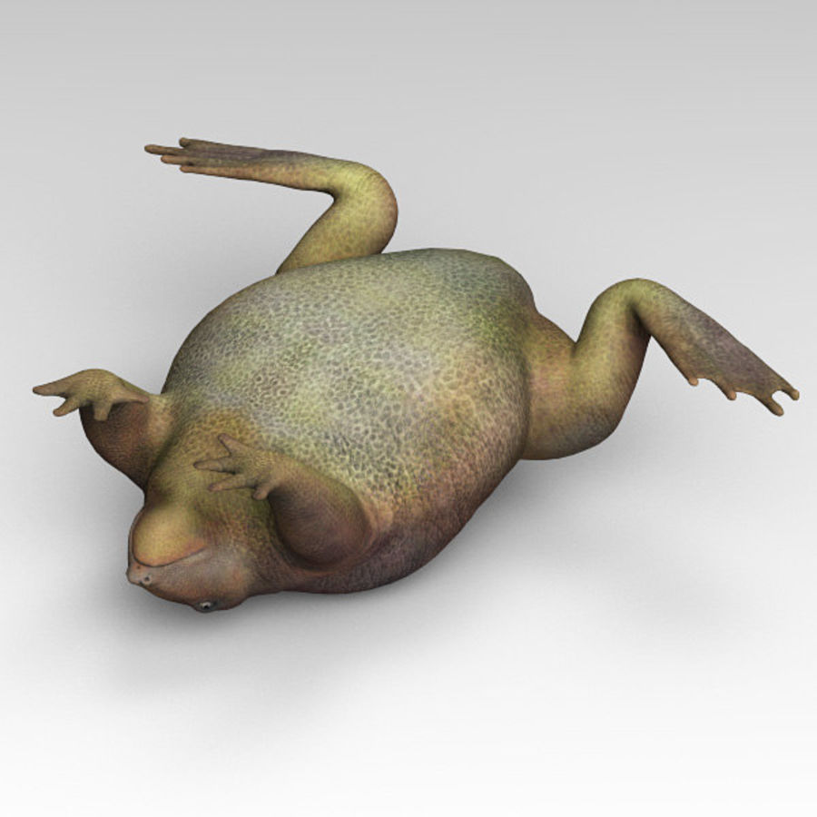 Frog Purple royalty-free 3d model - Preview no. 7