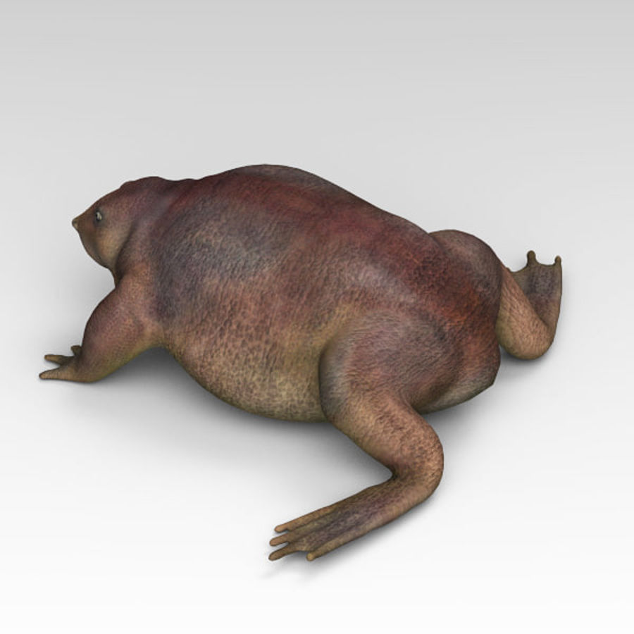 Frog Purple royalty-free 3d model - Preview no. 4