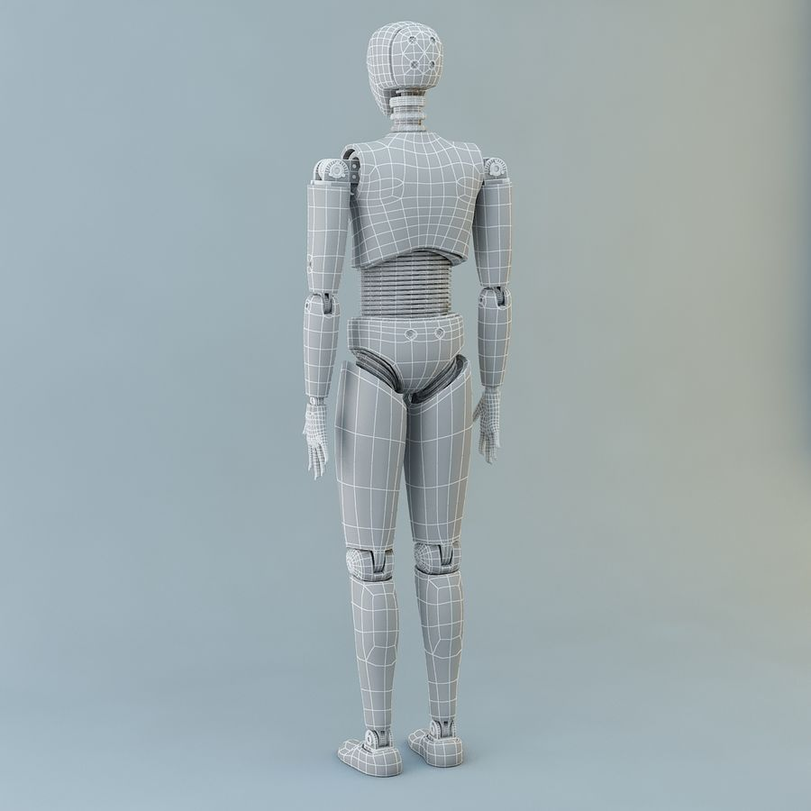 Crash Dummy Female royalty-free 3d model - Preview no. 11
