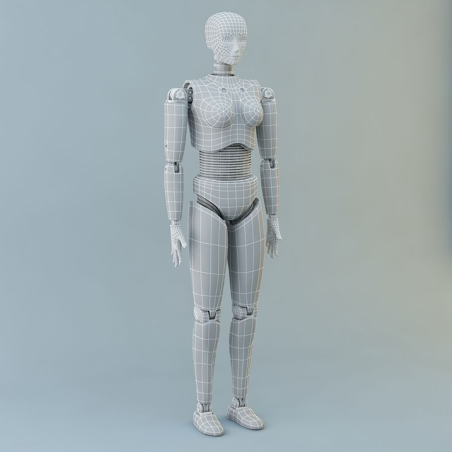 Crash Dummy Female royalty-free 3d model - Preview no. 10