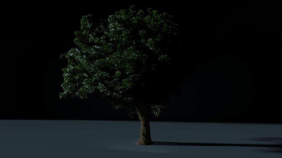 现实的总部树 royalty-free 3d model - Preview no. 3