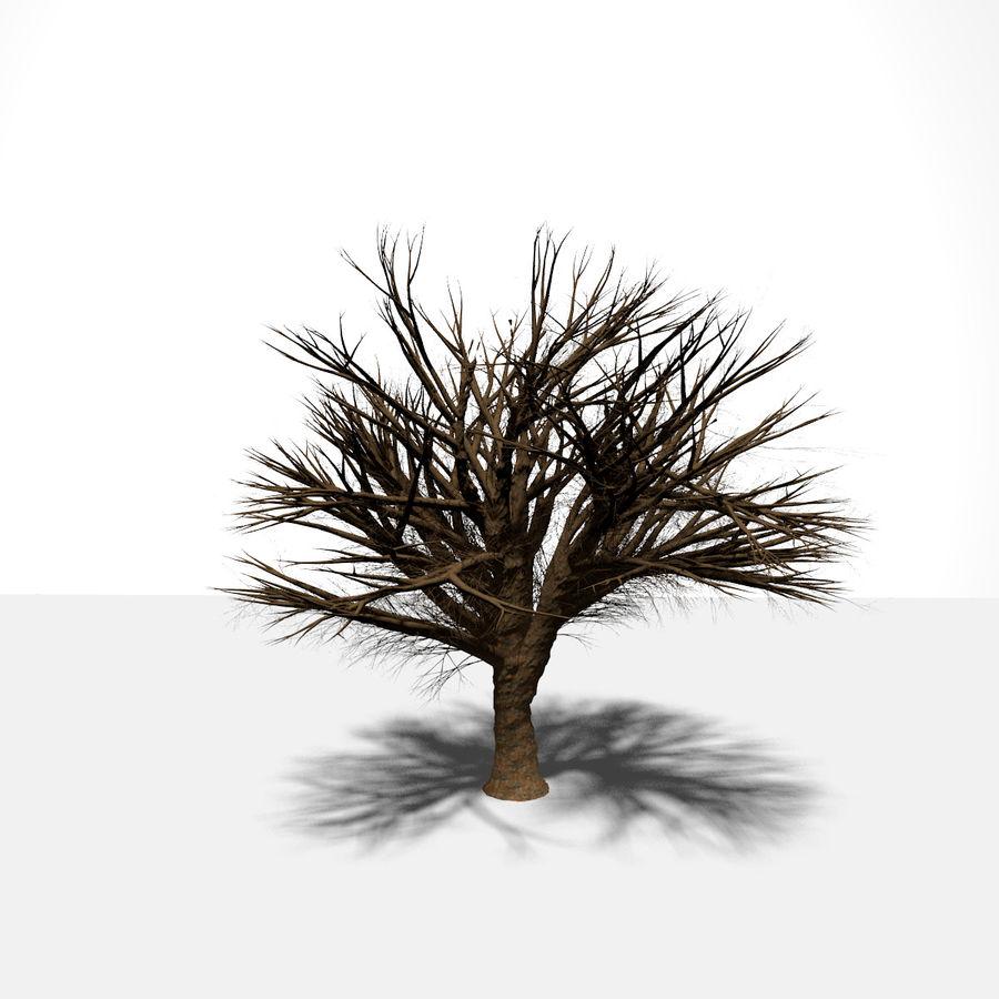 现实的总部树 royalty-free 3d model - Preview no. 5