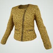 Golden Jacket 3d model