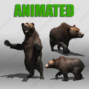 Grizzly Bear animé 3d model