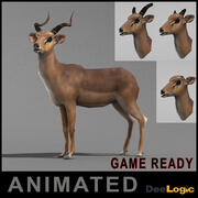 Antilope 3d model