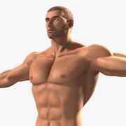 肌肉男 3d model