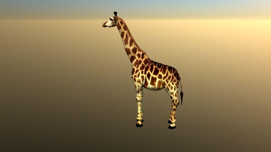 长颈鹿 royalty-free 3d model - Preview no. 2