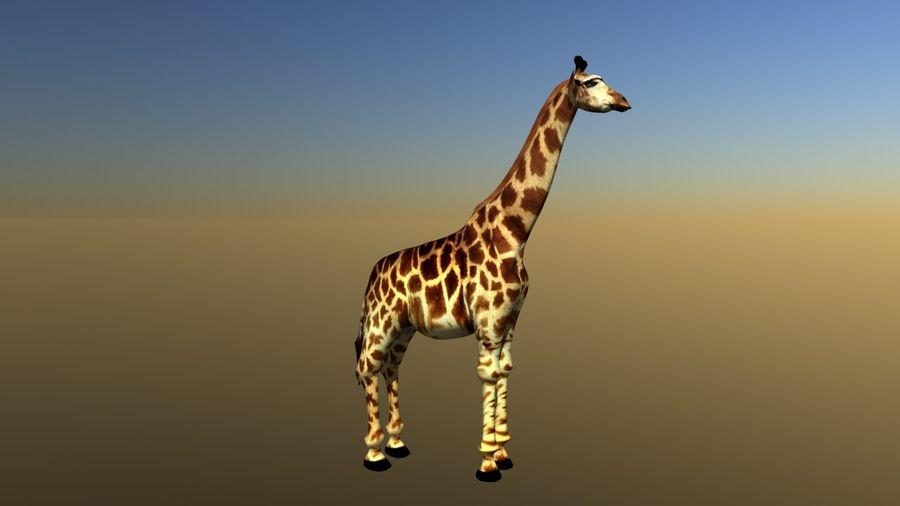 长颈鹿 royalty-free 3d model - Preview no. 4