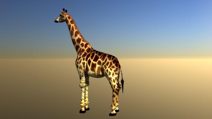 长颈鹿 royalty-free 3d model - Preview no. 3