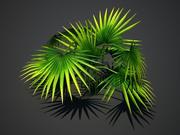 Tropische plant 3d model