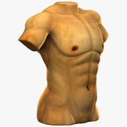 White Male Muscular Torso 3d model