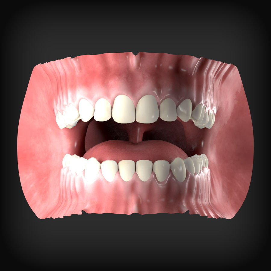 Human Mouth royalty-free 3d model - Preview no. 2